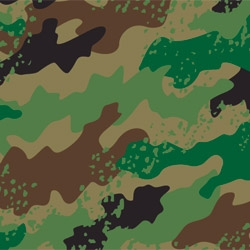 Fabric No. 791