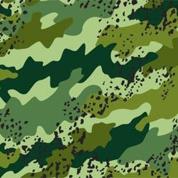Fabric No. 790
